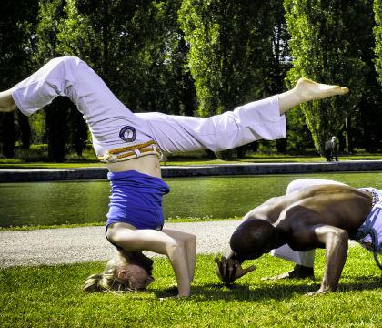 animations spectacles jogaki capoeira paris